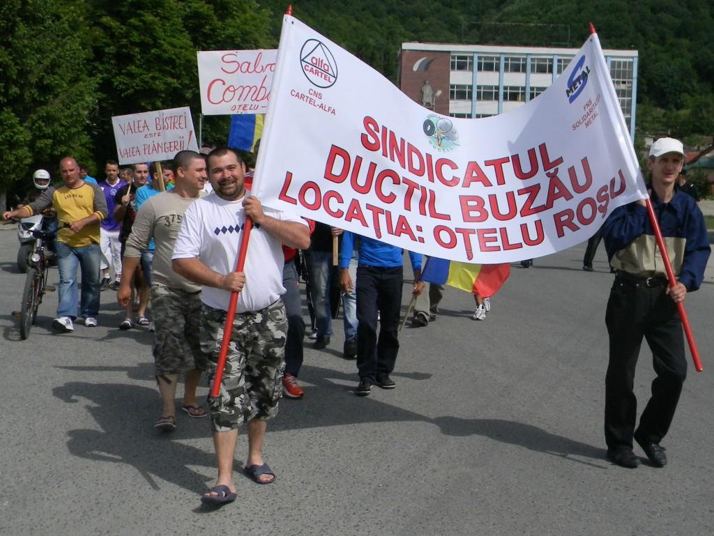 ductil proteste 7