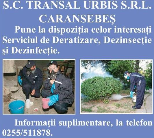 Servicii deratizare Transal Urbis