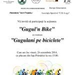Gugulani pe biciclete