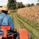 Împrumuturile fermierilor, garantate de FNGCIMM