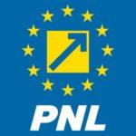 PNL Caraş-Severin se pregăteşte de alegeri
