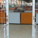 Piaţa Gugulanilor rămâne închisă!