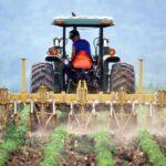 Fonduri europene de peste 20 de milioane de euro pentru tinerii fermieri