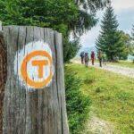 Caraş-Severinul, următorul pas pe Via Transilvanica