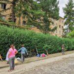 Se cosmetizează spaţiile verzi la Caransebeş